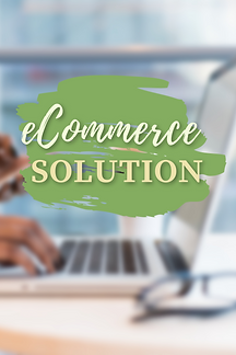 eCommerce Solution.png