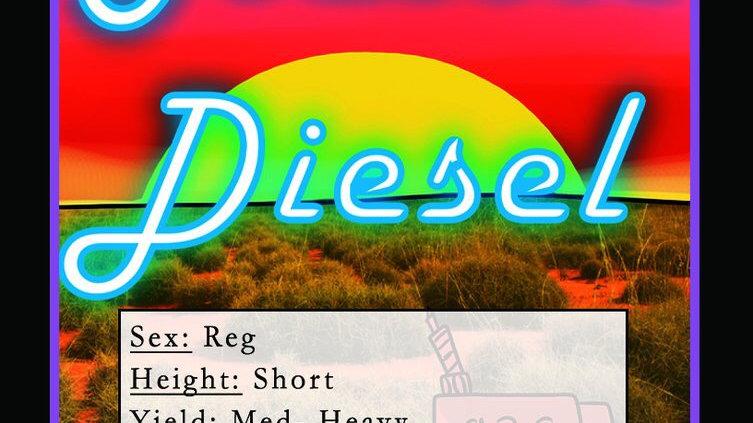 Aussie Diesel
