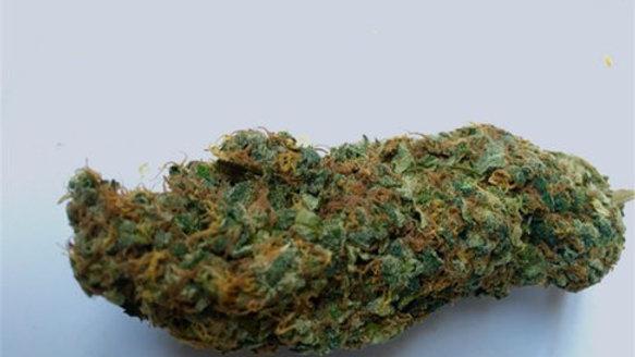 THC Bomb 4 regular seed packs
