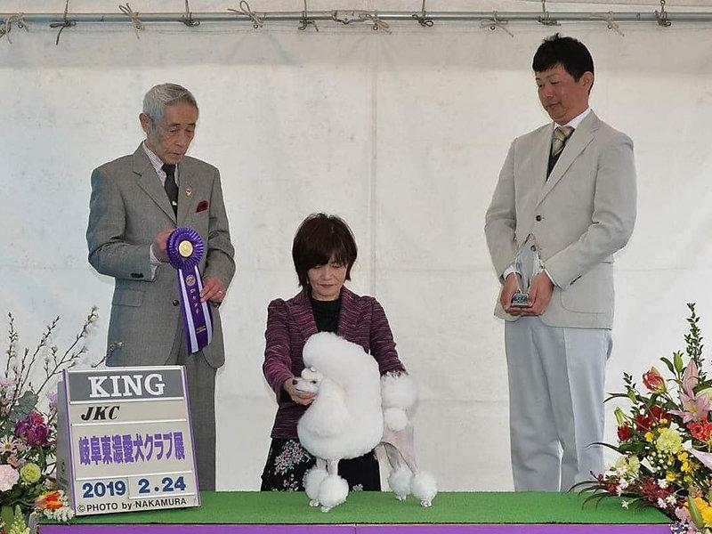 Feb.24,2019 Dog Show in Gifu-Ken