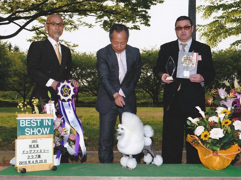Apr.24,2015 Dog Show in Saitama-ken