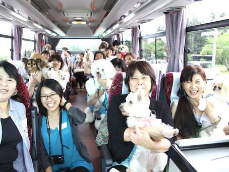 愛犬とイチゴ狩り&バーベキュー-ドッグサロンfuca店長ブログ【DOG WEB〜風花通信】より