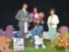 Jul.15,2019 Poodle Specialty Dog Show