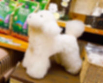 トリミング 実寸モデル犬