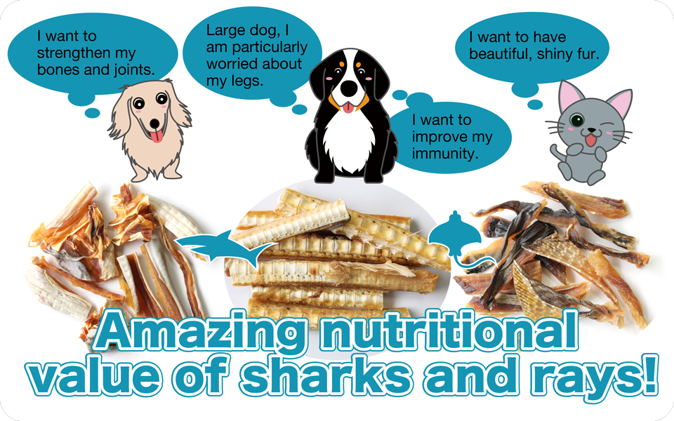 bau-bau snacks Amazing nutritional value of sharks and rays