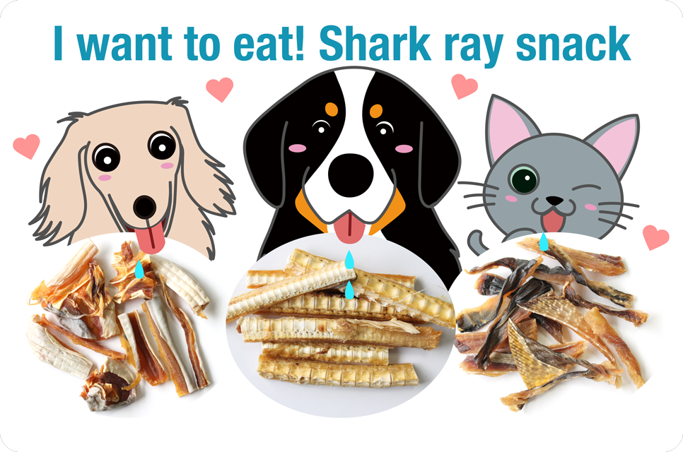 I want to eat! Shark ray snack bau-bau