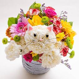 白いカーネーションの生花で作った猫のアニマルフラワー