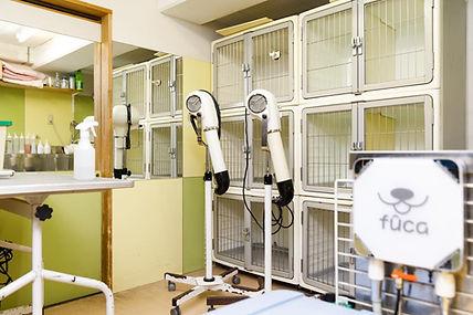 大阪豊中 ドッグサロンfucaは、 ヒューマンアカデミー指定トリミング研修所です