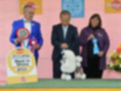 Jun. 19, 2016 FCI International Dog Show in Shiga