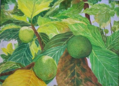 Breadfruit Tree - Watercolor
