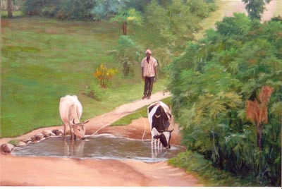 Peasant with his Cows, St. Marc, Haiti - Oil