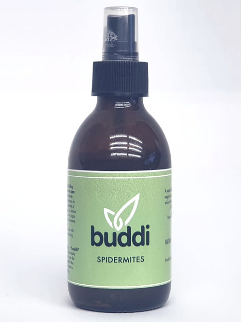 Buddi Spidermites