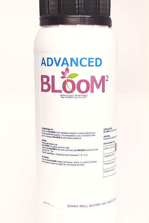 Advanced Bloom