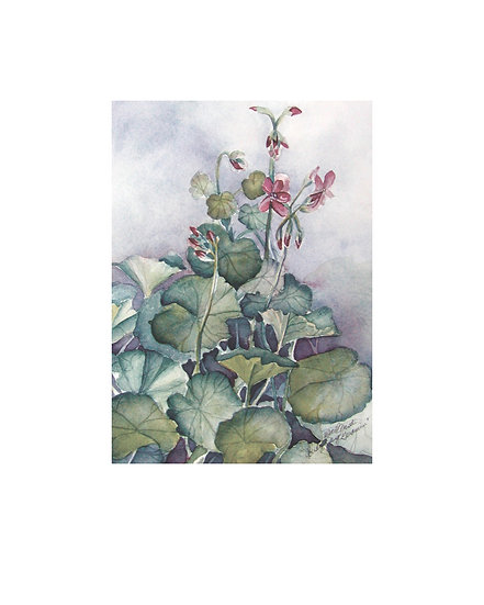 Cloudy Day Geranium -original watercolor painting by Gail M Austin
