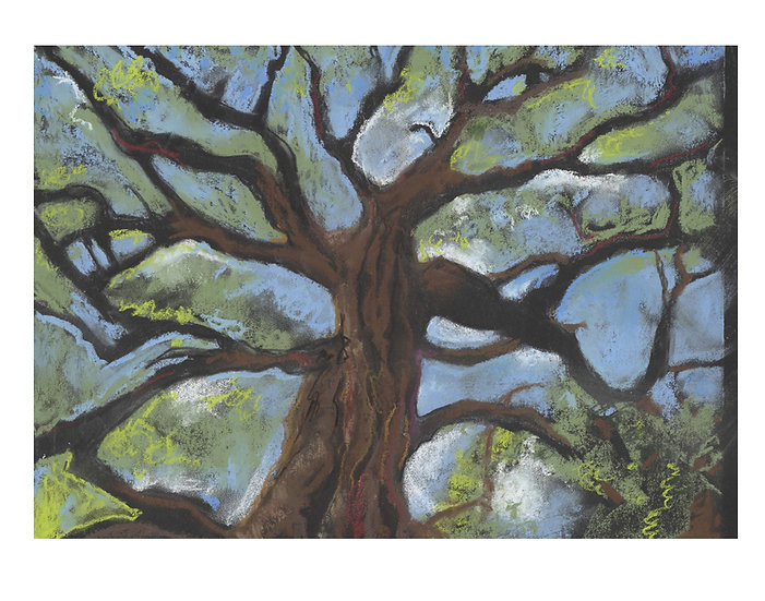 Tree Pastel -Original expressive tree pastel by Gail M Austin