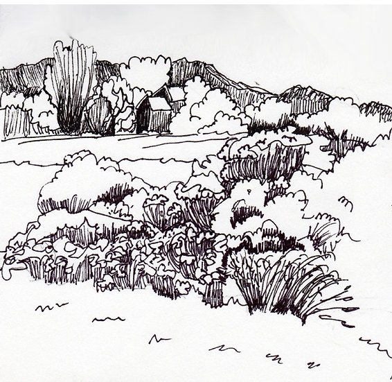 Strolling in Palidise -Ink on paper drawing by Gal M Austin