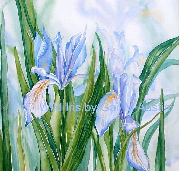 purple watercolor iris flowers with a muted and suggested background
