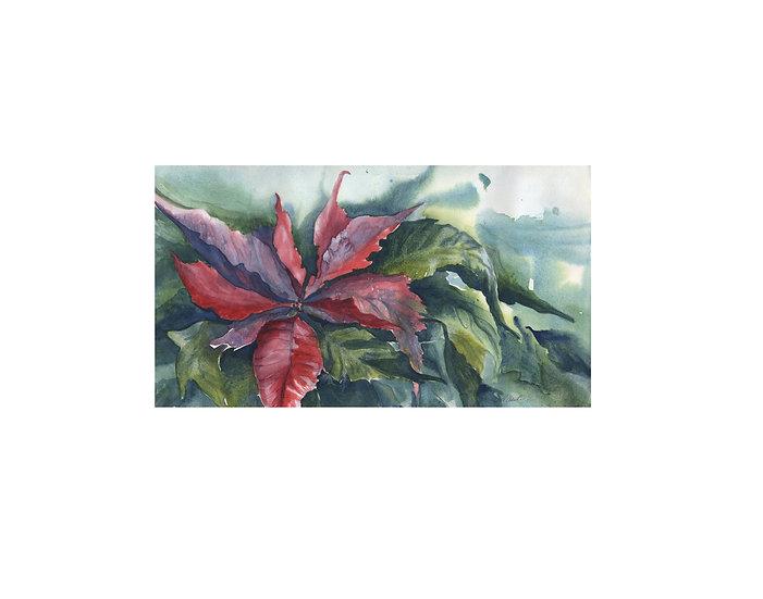 Painting Original Poinsettia -Gail M Austin