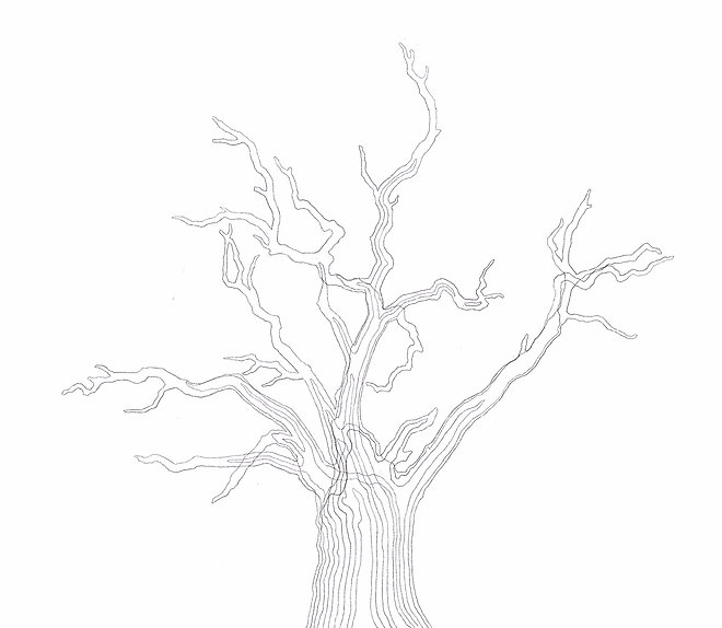 img_tree_drawing.jpg