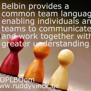Belbin provides a ....