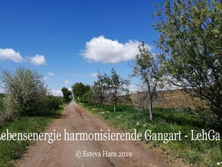LehGa - Lebensenergie harmonisierende Gangart