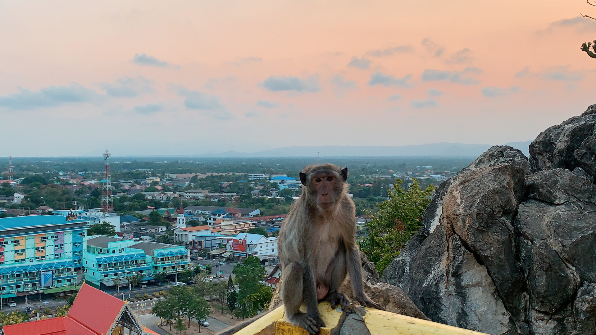 Chong Krajok Mountain   Chong Krajok Mountain - is a small mountain,  a way from Prachuap Khiri Khan, crossroads approximately 2 km, about  94 mters hight from sea level. Way up in front of Wat Thammikaram 2, have stair 396 steps to summit. On the top of  mount is enshrined the Buddha bones, on the way up, you will meet monkeys also sightseeing a beautiful view of the three bay town.