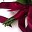 Thumbnail: Rose Dahlia Marsala Burgundy Woodland BoHo Hand Tied Silk Wedding Bouquet