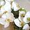Thumbnail: Cascading White Orchid Silk Bridal Bouquet
