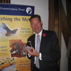 Bat Conservation Reception.png