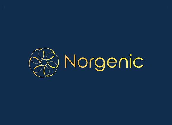 Norgenic.com