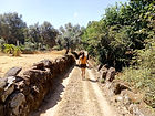 Mensagem da Estrela - WALKING WE TRACE THE PATH