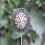 Thumbnail: Flor de Ferro e Madeira