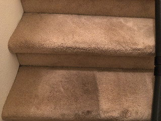We love being your local carpet cleaning service.  Ask us why! Call 907-378-1228.