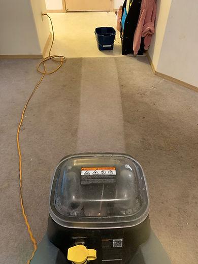 Cadet clean path good pic carpet cleanin