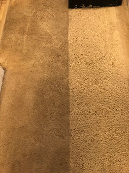 Dirty carpet shampoo before and after