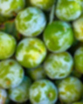 Background from Greengage plums. Street