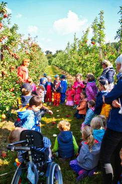 Einstein Wir gucken Apfel 2.jpg
