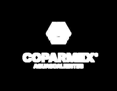 CE-Aguascalientes.png