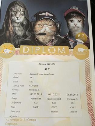 Диплом