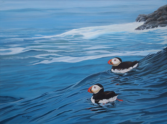 "Machias Island Puffins 18""x24"" - Sold"