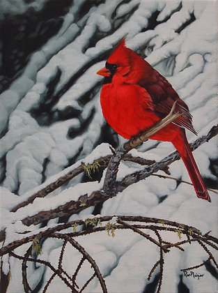 Winter's Fire - Male Cardinal - SOLD -