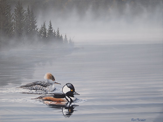 "Hooded Merganser Pair - 12""x9"" - Sold"