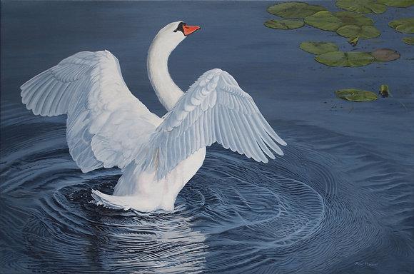 "Water Dancer 30""x20"" framed original"