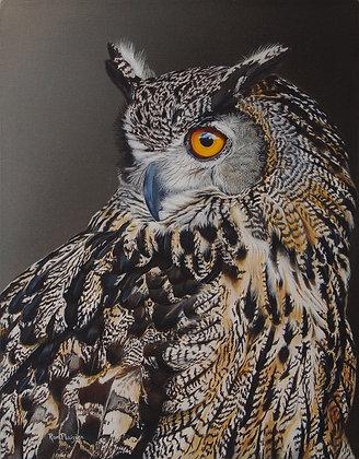 "Eurasion Eagle Owl - 14""x11"" original"