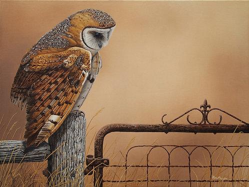 "Gatekeeper - Barn Owl - 18"" x 24"" -SOLD-"