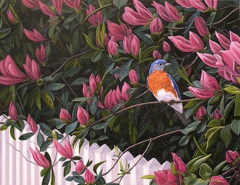 "Azalea Bluebird- 14""x18"" Original Framed"
