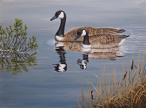 "Calm Waters -Canada Geese 12""x16"" Original framed"