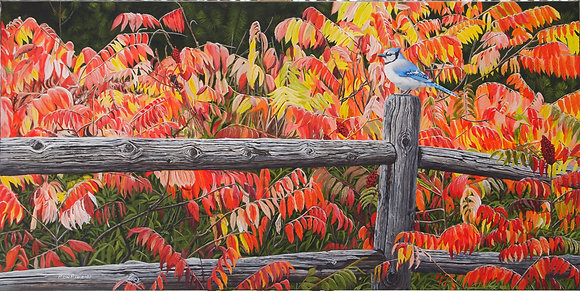 "Autumn Blaze - Bluejay 15""x30"" framed original"