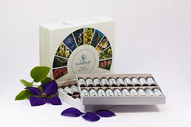 bach-flower-therapy-1543139_1920.jpg