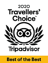 Travellers' Choice 2020 - Tripadvisor
